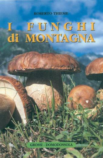 I funghi di montagna