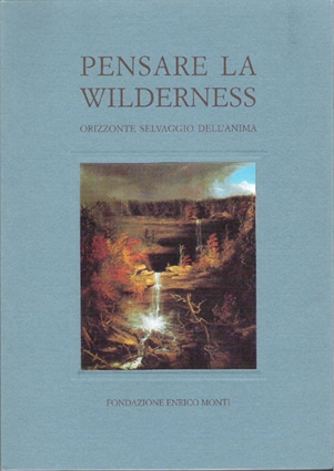 Pensare la Wilderness